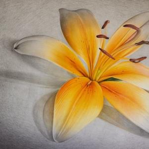 "Paper Artwork: ""Flower"" - 50 x 80 cm - Pastels on paper"